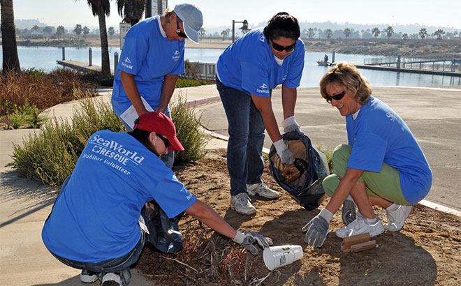 SeaWorld Beach Cleanup